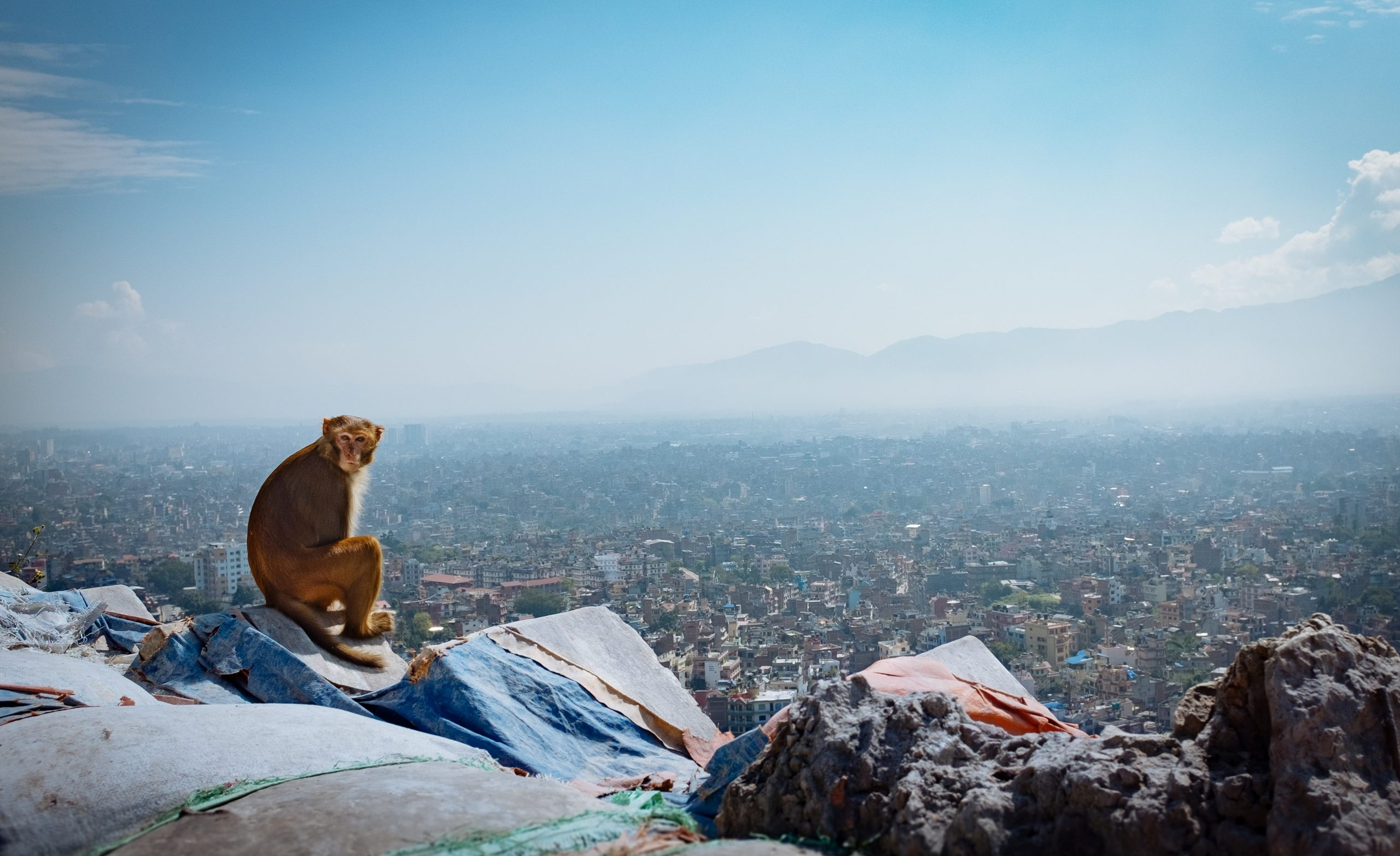 Walking Holiday in Nepal
